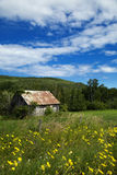 Little shed in a meadow Royalty Free Stock Images
