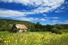 Little shed in a meadow Royalty Free Stock Photos