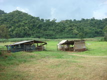 Little sheds on green field in a valley Royalty Free Stock Photo