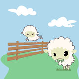 Little sheeps Royalty Free Stock Photo