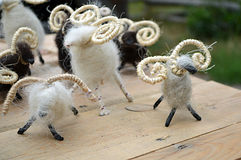 Little sheeps, wool handmade toy. On the table Stock Image