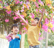 Little sibling boy throw flowers in to the air with smiling Stock Photos