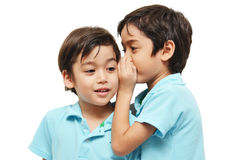 Little sibling boys sharing a secret. On white background royalty free stock photography