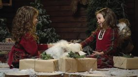 Two girls in red dresses laugh and pat the white dog that lies among the Christmas gifts, bit slow motion. Little sisters dresses are sitting in a room with New stock video footage