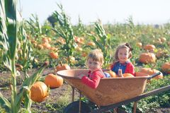 Happy girls sitting inside wheelbarrow at field pumpkin patch Royalty Free Stock Image