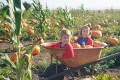 Happy girls sitting inside wheelbarrow at field pumpkin patch Royalty Free Stock Photo