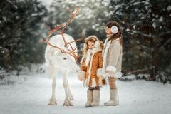 Portrait of beautiful Little girl in fur coat at winter forest royalty free stock photos