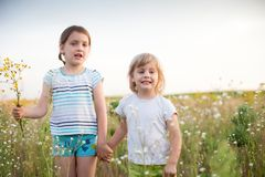 Little sisters walking on summer meadow. Six and four  years old girls on   summer field with flowers stock photos