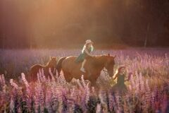 Free Little Sisters Walking With Horse In A Pink Meadow Royalty Free Stock Image - 194361236