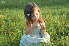 Little sitting in a field. A little girl sitting in a field of flowers Royalty Free Stock Photography
