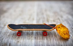 Little skate with yellow leaf ballast. Reset ballast, the concept of optimization and promotion Royalty Free Stock Image
