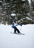 Little skier doing slalom. Young skier at downhill slalom competitions Stock Image