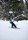 Little skier doing slalom Stock Image