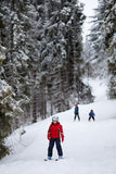 Little skiers Royalty Free Stock Photo