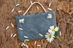 Little slate board on rustic background Stock Image