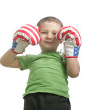 Little smiling boxer. Looking from above over white background Stock Photos