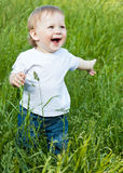 A little smiling boy in the field Stock Image