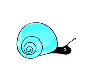 Little snail in the sink Royalty Free Stock Image
