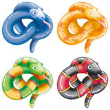 Little snakes. Little nice and smiling snakes Royalty Free Stock Images