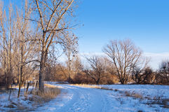 Little Snowy Path Through the Prairie Royalty Free Stock Photography