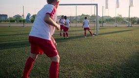 Little soccer player is scoring goal. In match on stadium stock video