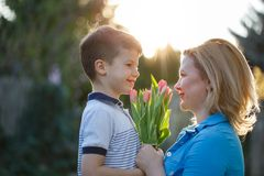 Little son gives bouquet of tulips to mom at Mother`s day in sun. Set, looking to each other Stock Photography