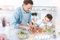 Little son watching his dad cutting vegetables into slices Stock Image
