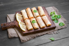 Little spring rolls Stock Image