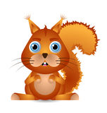 Little Squirrel Royalty Free Stock Photo