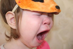 The little squirrel weeps Stock Photo