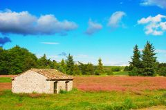 Little Stone House. Postcard of a little stone house and meadow of clover stock image