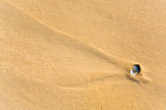 Little stone in sand Royalty Free Stock Images
