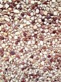 Little stones background Stock Photos