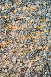 Little stones on the beach. Grey and orange sunlit small pebble stones on the beach Stock Image