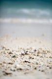 Little stones on beach Royalty Free Stock Image