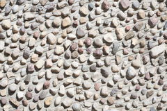 Little stones on a concrete wall Royalty Free Stock Photo