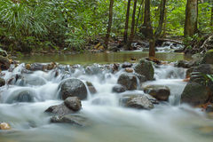 Little stream Stock Photos