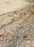 Little stream closeup Royalty Free Stock Photography