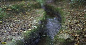 Little stream flowing stock video footage