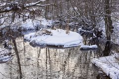 Little stream flowing through the winter forest stock photo