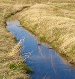 Little Stream Through Grasslands Royalty Free Stock Photos