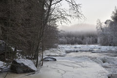 Little stream with ice and fog Stock Photography