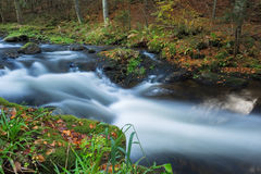 Little stream with a long exposure during Fall in the Bavarian forest, Germany. Stock Photography