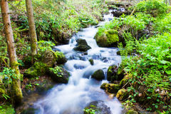 Little Stream Royalty Free Stock Photography