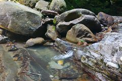 Little stream of mountain creek flows between the rocks Stock Image
