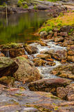 Little stream in mountains, Norway. Stock Images