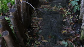 Little stream in mountains stock footage