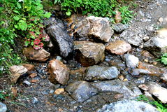 Little stream with stones. A small stream with stones by sunshine in austria Stock Photography
