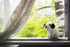 Little stuffed dog Royalty Free Stock Image