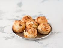 Little Sultana Muffins Stock Images